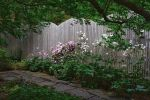 Garden wall by Kokomo616