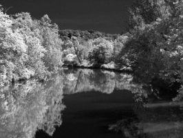 IR Reflections by deviousmoose