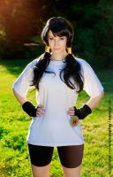 Videl - Dragon Ball by EnjiNight