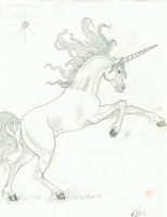 Unicorn by inzaratha