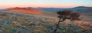Dartmoor vista by Alex37