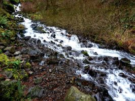 Wahkeena Creek by lupagreenwolf