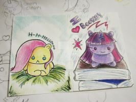Fluttershy and Twilight Sparkle ATC by MilkCannon