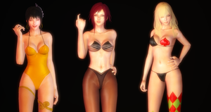 Vindictus - Inner pack1 by vcah1990