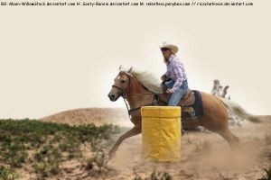 Another Barrel Race Horse Picture by RicochetRosie