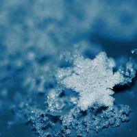 Snowflake by 0paline