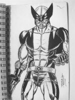 Wolverine by FanBoy67