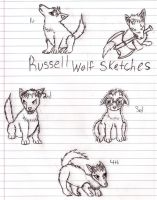 Russell Wolf Sketches by FlamingStars