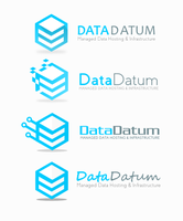 Data Host Logo Concept 1 (SOLD) by DianaGyms