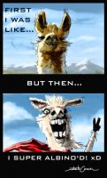 Here's a Llama by ISignRob