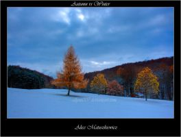 Autumn vs Winter by allym007