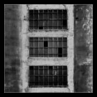 Windows by vodj