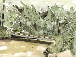 Pond at the botanical gardens by egonSchiele