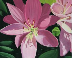 Pink Lilly by VanArt94