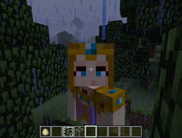 This is me on Minecraft by princesszelda224
