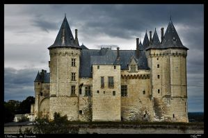 Castle Of Saumur II by MJ-Ach