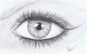 realistic eye - 1 by The-Purring-Teapot
