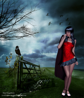 Little Red Riding Hood by cryptic-sacrifice