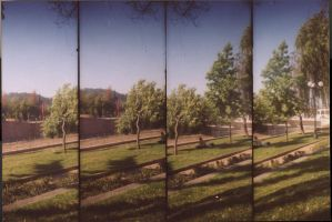 lomography lover by katax