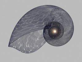 Copied Nautilus Shell by allthenightlong