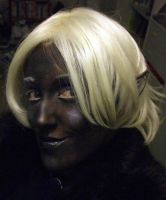 Drow makeup 1 by forestfruits1