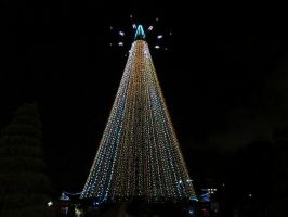 Light up Christmas Tree X by amormimosse
