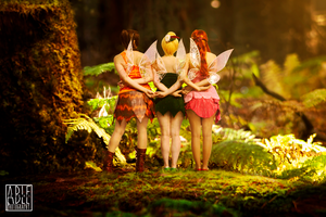 Cosplay: little fairies by Abletodoall
