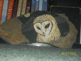 Barn Owl Painting by me by Iziume89