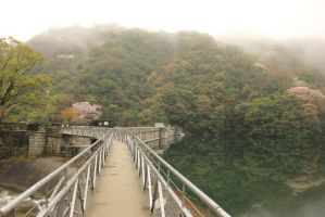 looking back down the bridge by rayna23