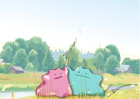 Ditto Duo by FraankBiebs