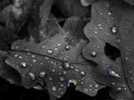 One Drop Earth by KungfuHamster