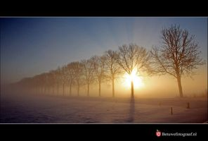 Sunshine is like a fairytale by Betuwefotograaf