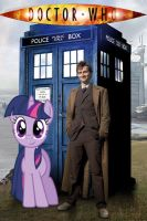 The Doctor and Twilight Sparkle by kickass222urmom