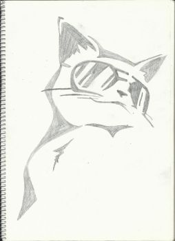 Cat in sunglasses by iNf3ctedRa1N