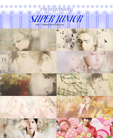8TH ANNIVERSARY SUPER JUNIOR by FishBubi
