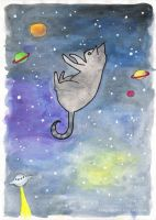 Space Cat by fungopolly