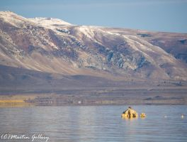 Mono Lake California 395150409-9 by MartinGollery