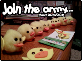 Hibird Army at Bishie Con 2009 by emberelidd