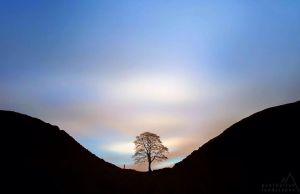 Sycamore Gap by PaulBullenLandscapes