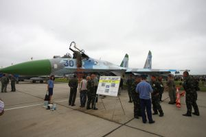 Air Show 2010 Hungary 21 by rodibest