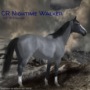 Nightime Walker HEE by MClaireB
