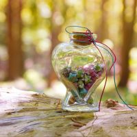 Bowl of wishes by Pamba