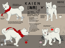 Kaien Ref-sheet by Battouga-Sharingan