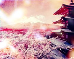 Fuji Cherry Blossoms. by zeroai