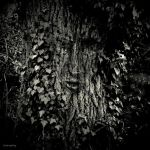 Greenman by lostknightkg