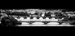 Charles Bridge BW by tepithebest