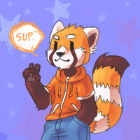 Tavi the Orange Panda by silverava