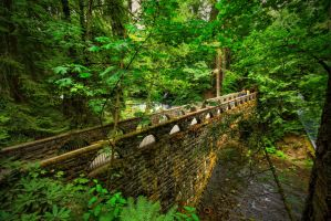 Whatcom Falls Bridge by SteelAtlas