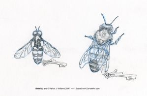 Bees by spacecow4