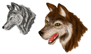 Wolves Heads by December012